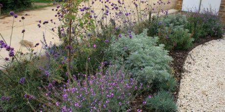 Front garden planting scheme, Milcombe