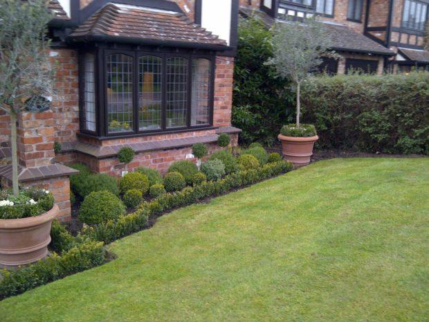 Trendy Topiary