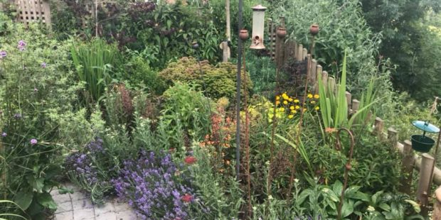 Hook Norton Garden Design & Build Revisited
