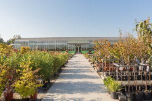 PLANT SOURCING & ADVICE SERVICE